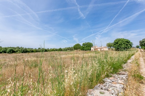 Quietly situated building plot with good access in Llubi