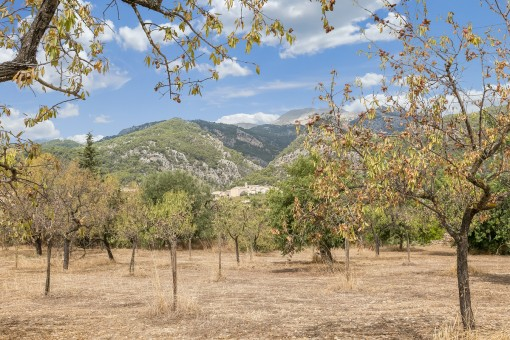 Two Mallorcan fincas for renovation on large building <br /> plots with a fantastic views of the Tramuntana
