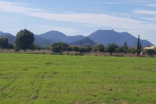 земельные участки на Cales de Mallorca