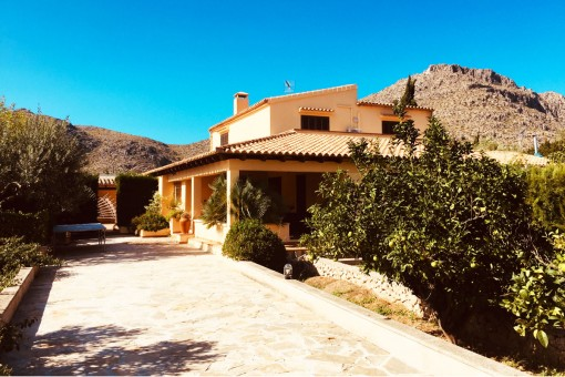Semi-detached finca in a quiet location with private pool and large plot on the outskirts of Pollenca harbour