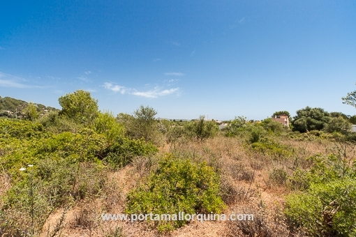 Plot in prime location nearby Cala Ratjada
