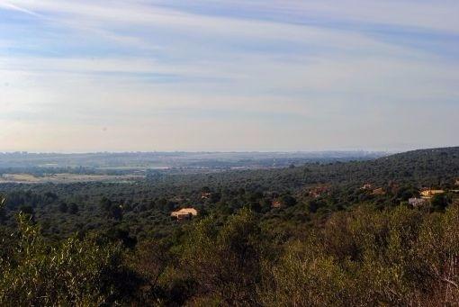 земельные участки на Portol - Puntiro