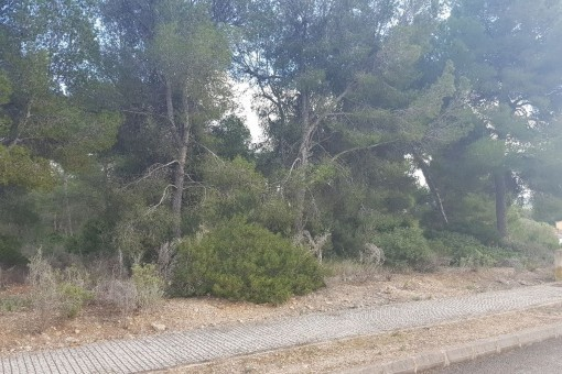 Large building plot in a central location in Santa Ponsa