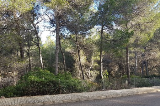 Building plot for a large detached house on the golf course of Santa Ponsa
