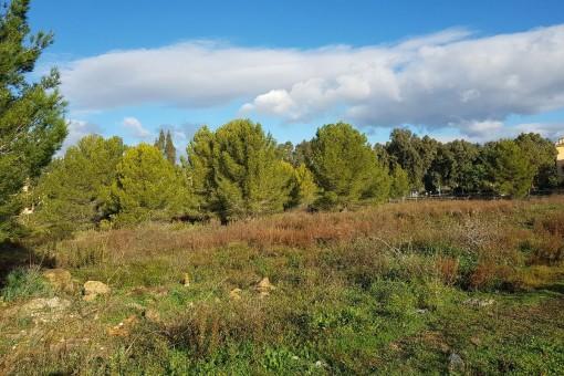 земельные участки на Santa Ponsa