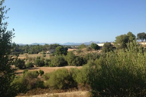 земельные участки на Santa Margalida