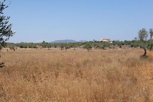 земельные участки на Cala Llombards