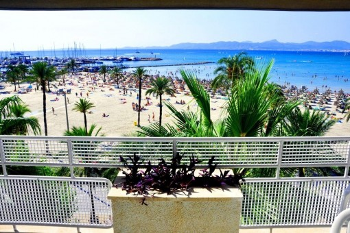 Beautiful apartment on the 1st sea line close to Club Nautico in Arenal