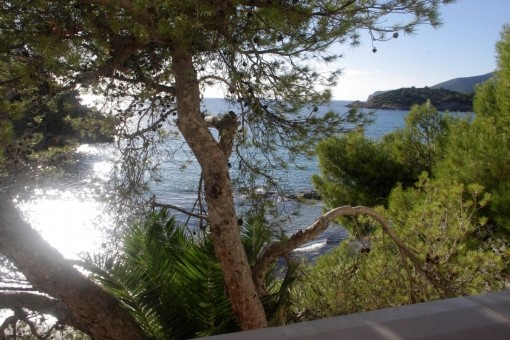 Apartment on the first sea line in Sant Elm