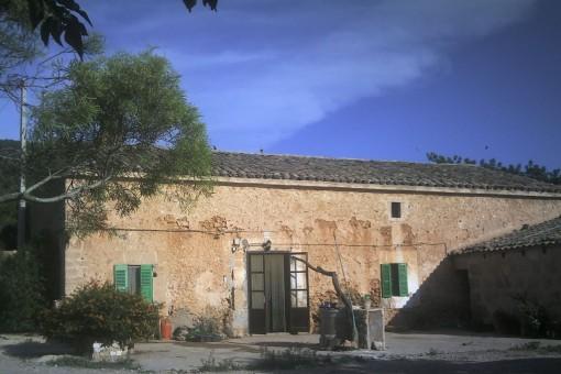 земельные участки на Santa Eugenia