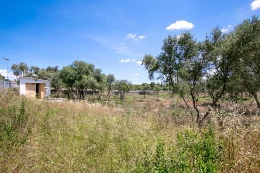 земельные участки на Sa Cabaneta - Marratxi