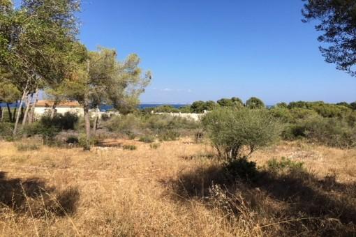 земельные участки на Sol de Mallorca