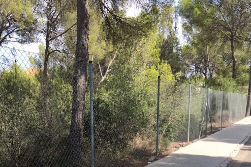 земельные участки на Cala Vinyas