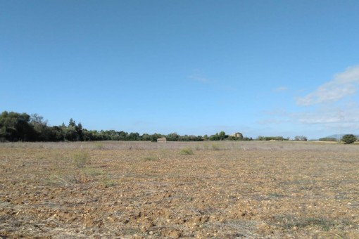 Easily-accessible building plot between Inca and Sencelles with views of the Tramuntana mountains