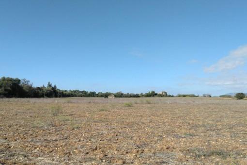 земельные участки на Sencelles