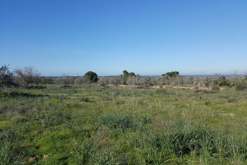 Exclusive plot with panoramic views in Campos