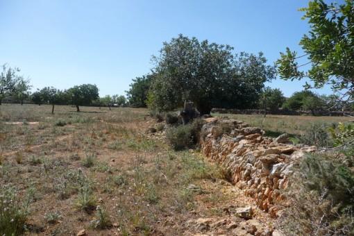 земельные участки на S'Horta