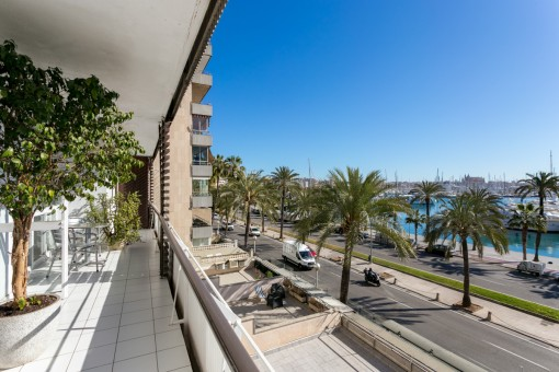Beautiful, bright and large apartment right on the Paseo Maritimo with views over the harbour of Palma
