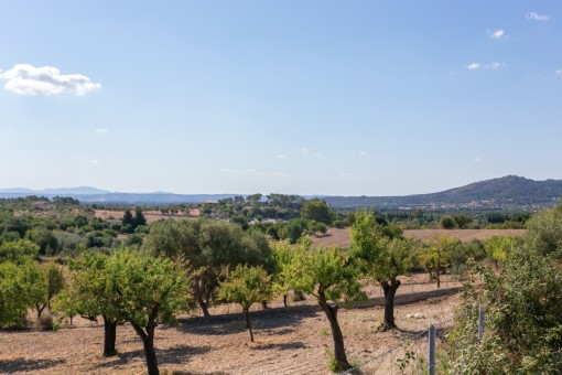 земельные участки на Moscari