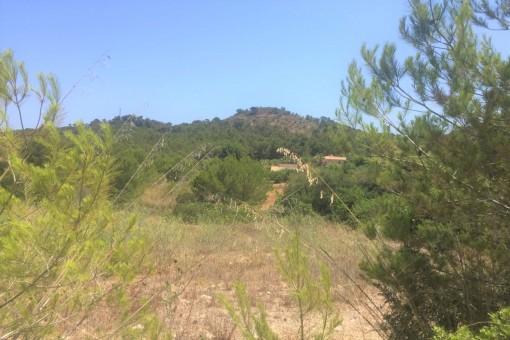 земельные участки на Font de sa Cala