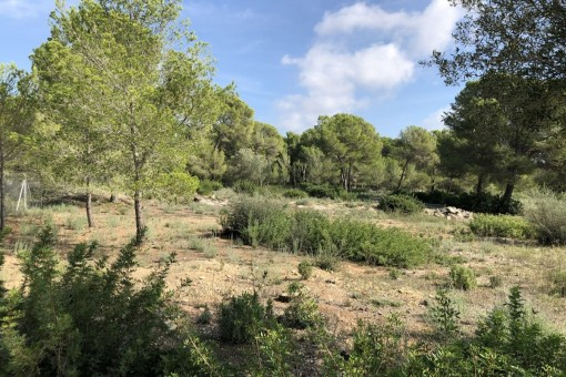 Grandiose plot with permission to build in the beautiful Nova Santa Ponsa