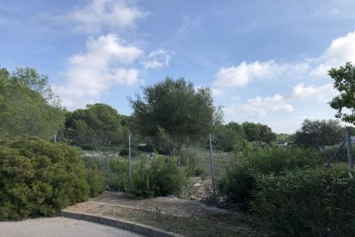 Privatly located plot in the heart of Nova Santa Ponsa