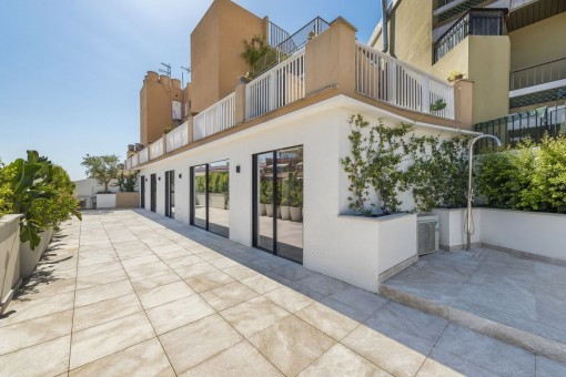 квартиры на Santa Catalina